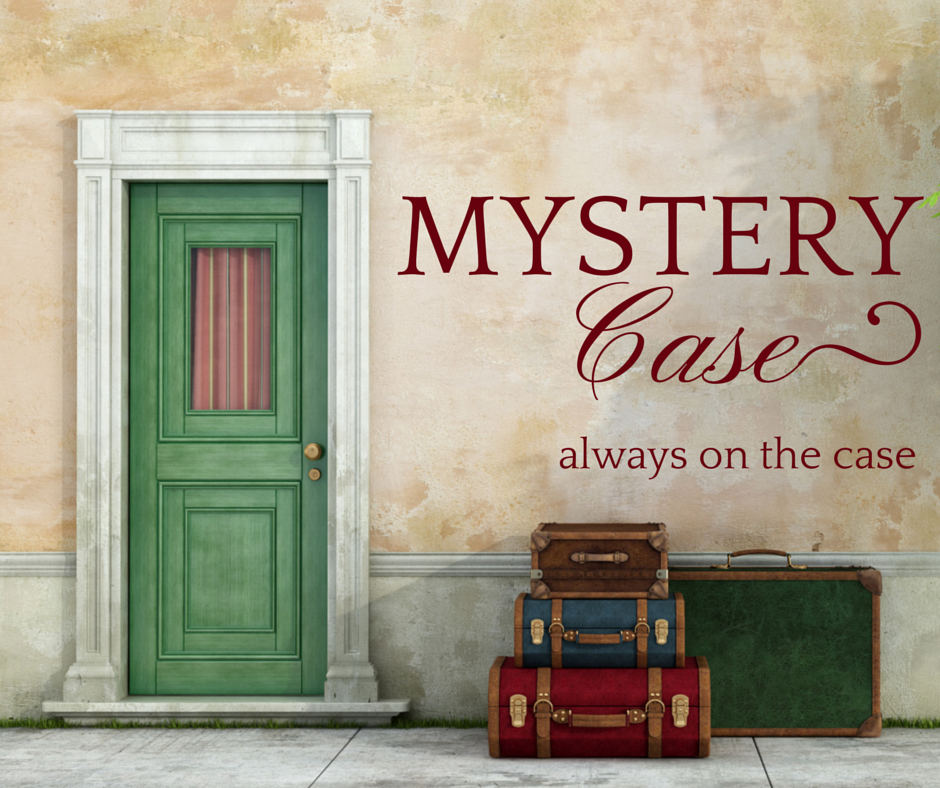 Agent Mystery Case is always on the case
