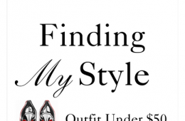 Mystery Case Style Challenge | Outfit Under $50