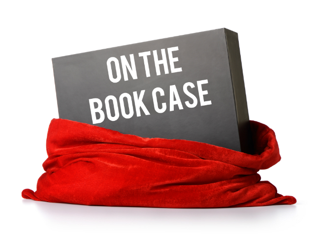 Agent Mystery Case giveaway ON THE BOOKCASE