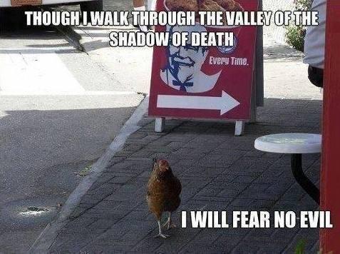 Fear no evil meme