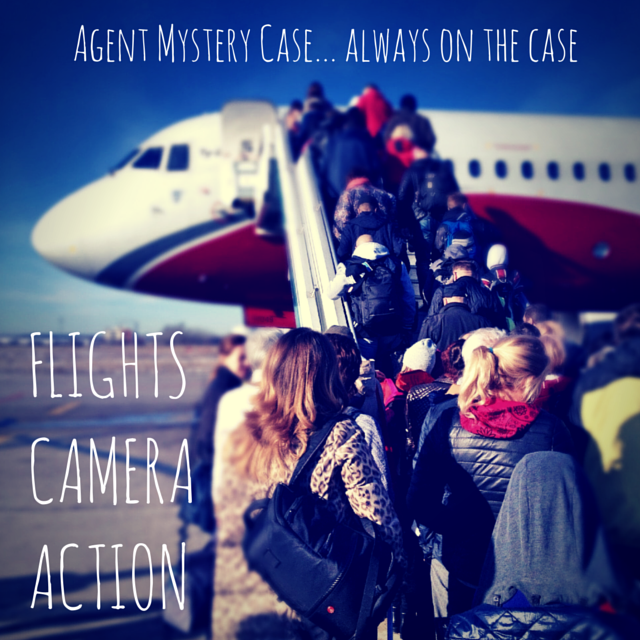 Travel Blogging agent mystery case